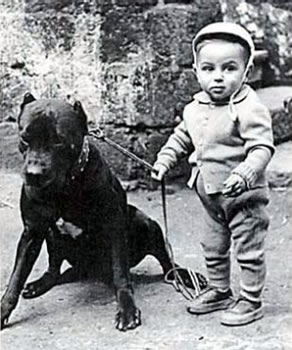 Historical Photo, Cane Corso with child